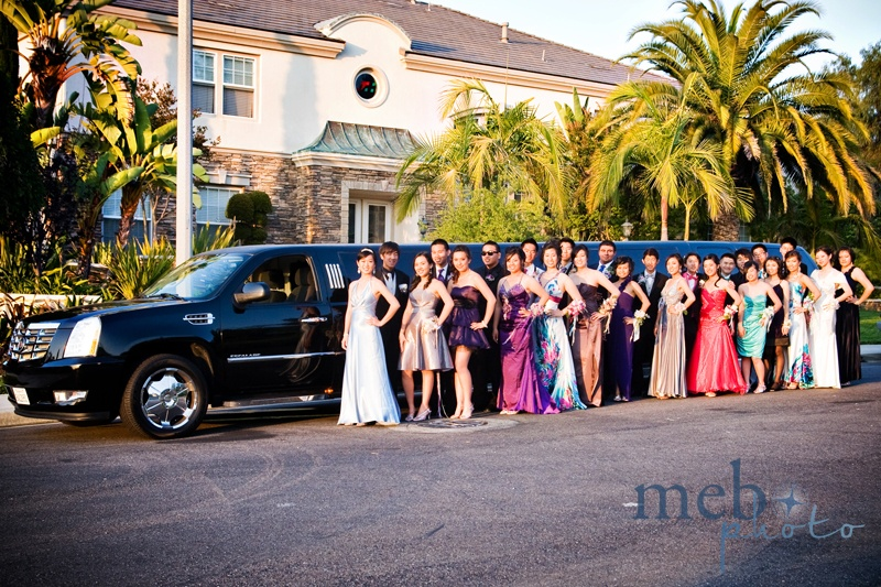 Great shot of the whole prom group in front of their HUGE limo!